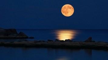Ekim-Venüs retro-Sert Yeniay-Şok Eden Dolunay (Video)