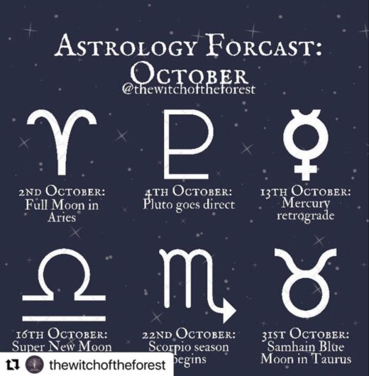 Doğru tahmin ediyor, yüzbinlerle izleniyor sandığınız astrologlar çeviri yaptırıyor. Kendi öngörü yeteneği olmadığı ve sık sık yanıldığı için rezalete bir son vermek için yabancı astrologlardan çeviri yaptırıp anlatayım diyor. Diyor ama Dünya'nın kendi etrafında ve Güneş'in etrafında döndüğünü unutuyor